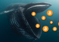 【MICA RESEARCH】巨鯨囤幣與避險操作明顯,比特幣短期內或有反彈